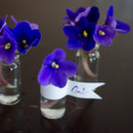 DIY Violet Mini Arrangements