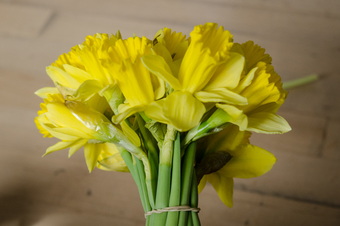 March Floral - lemonthistle.com
