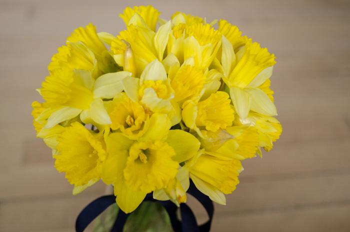 March Floral - lemonthistle.com