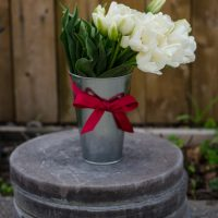 DIY Tulip Arrangement for Spring - lemonthistle.com