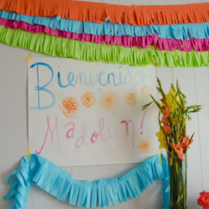 DIY Frugal Fringe Garland for a Fiesta! -lemonthistle.com