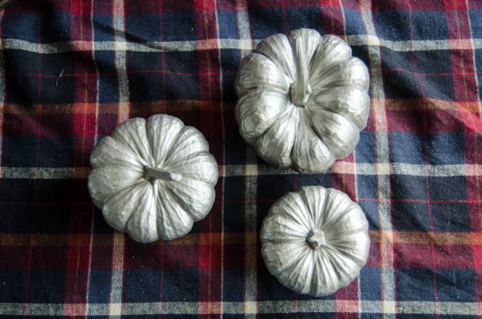 These are perfect for fall decor! Brushed Nickel painted mini pumpkins