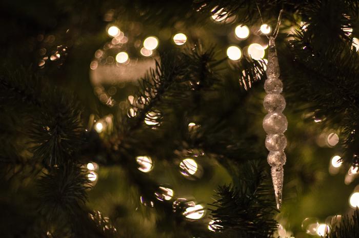 Christmas Traditions Blog Tour- Deck the Halls