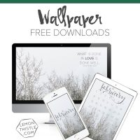 Free Downloadable Device Wallpapers (Desktop, Iphone, Ipad) in three designs: calendar, script, or quote!