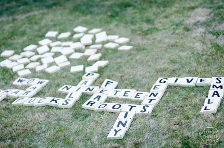 DIY Yard Games- I love the idea of having dominoes in my backyard-and speed scrabble!