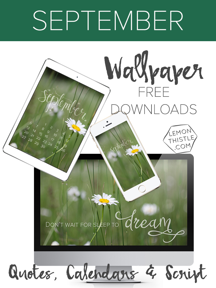 Free Calendar and Quote Wallpapers for your Iphone, Ipad and Desktop backgrounds
