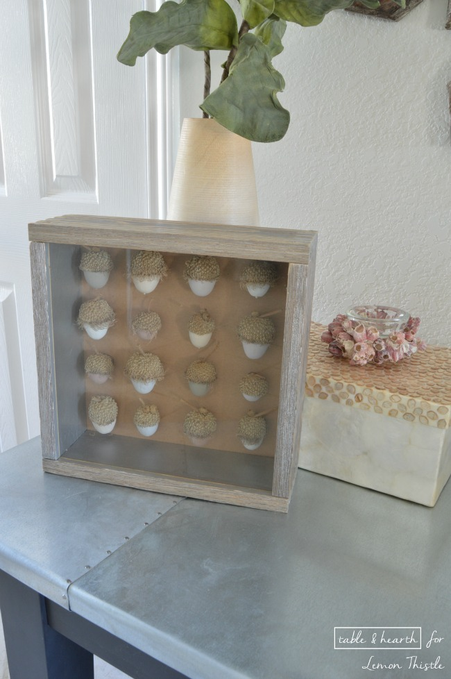DIY Acorn Shadowbox- gorgeous natural decor!