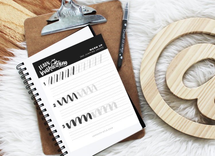 LOVE this Idea! Learn brush lettering online. That workbook looks amazing.