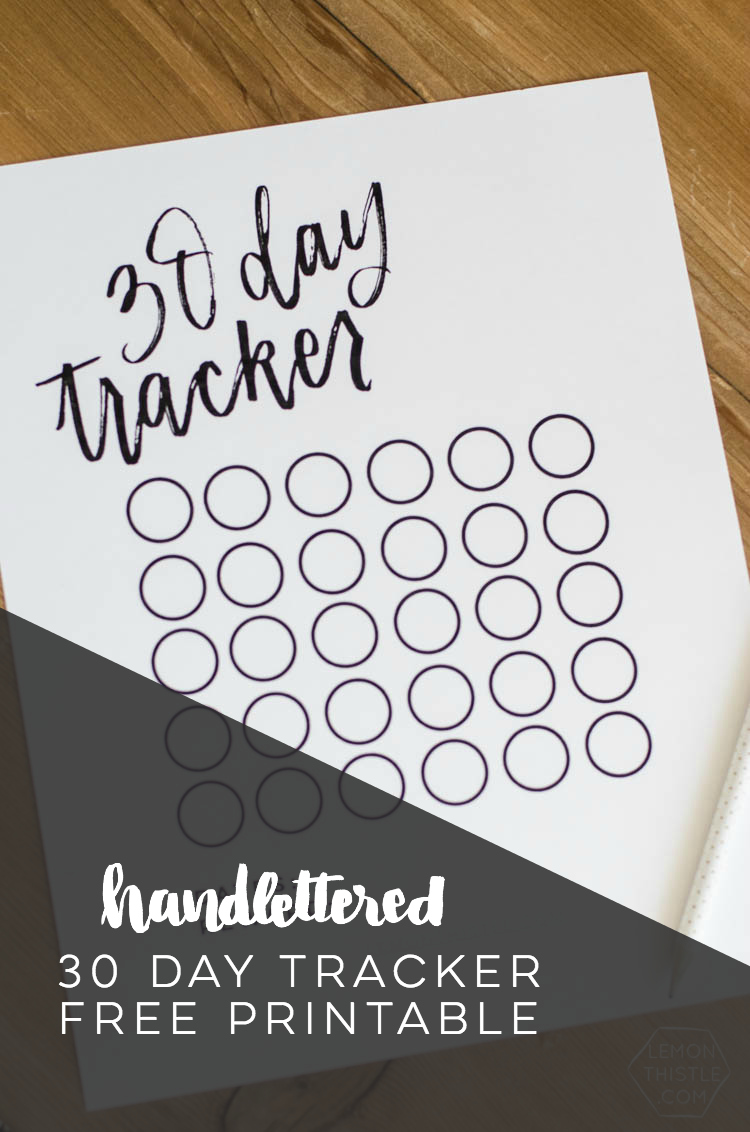 This is a picture of Clean Bible Reading Tracker Printable