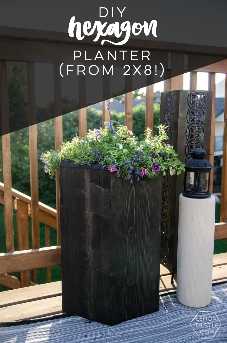 DIY Hexagon planter from one board of 2x8!