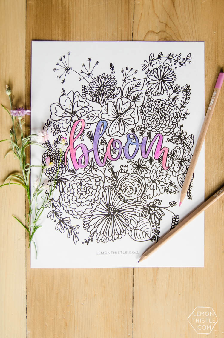 Love this free printable coloring sheet! Plus the hand lettering and floral illustrations are rad. Perfect for summer