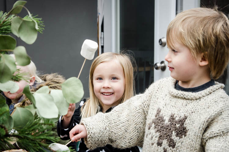 Backyard s'mores activity- perfect for an advent calendar activity- love the idea of doing them over candles too