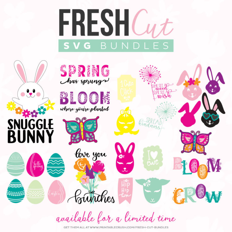 collage of all cut files included in the spring fresh cut svg bundle