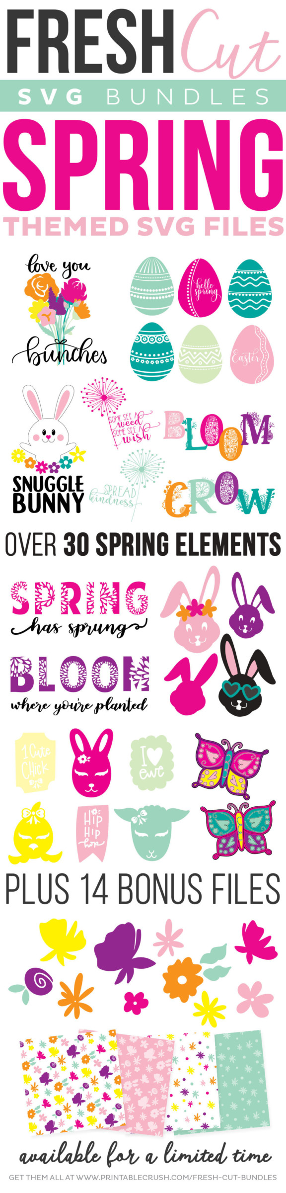 collage of all cut files and bonuses included in the spring fresh cut svg bundle