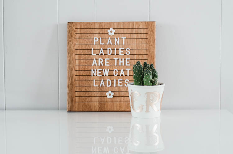 white plant pot holding cactus with floral monograms spelling 'grow' in champagne colored matte foil; in front of wooden letterboard that reads; plant ladies are the new cat ladies