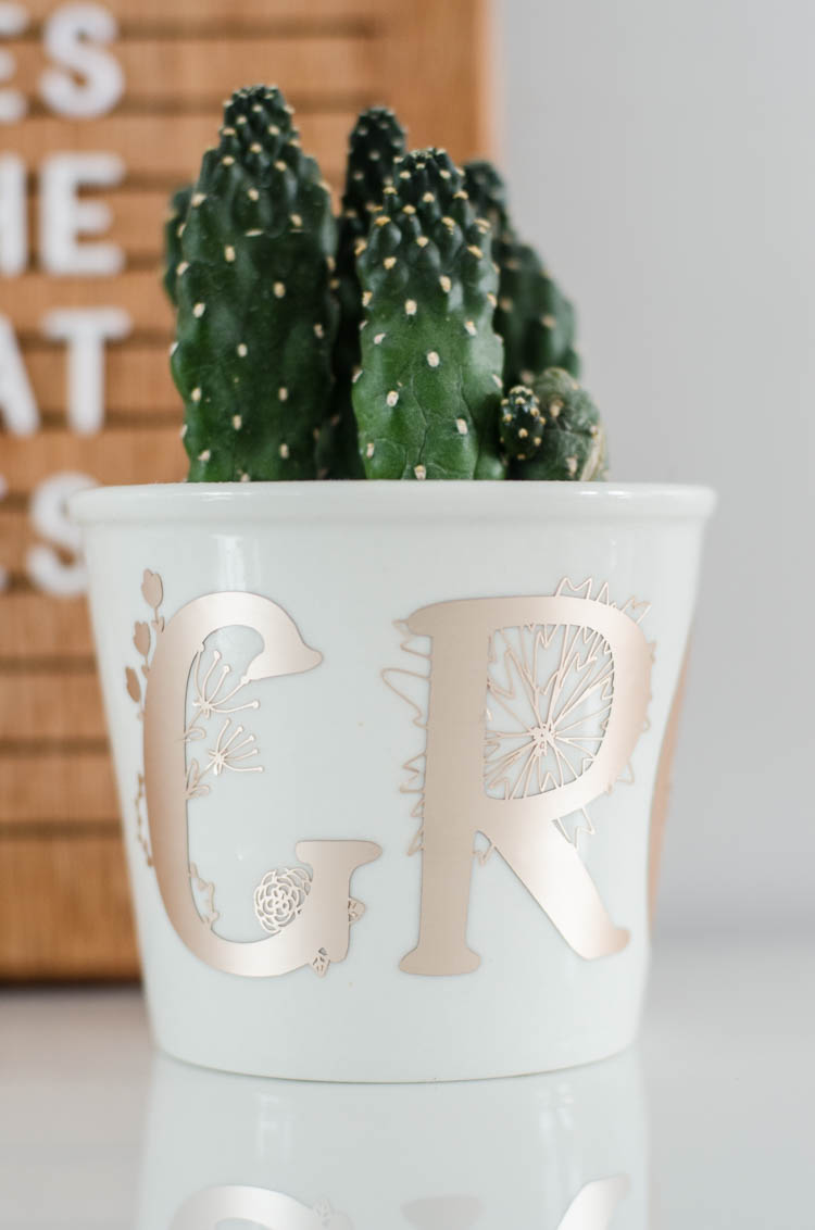 detail shot of white plant pot holding cactus with floral monograms spelling 'grow' in champagne colored matte foil