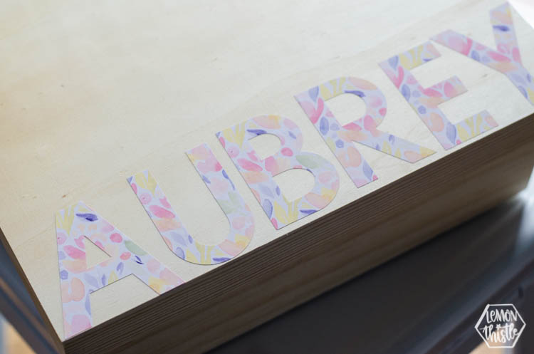 photo about How to Use Printable Vinyl identify How Toward Hire Printable Vinyl - Silhouette VS Cricut - Lemon
