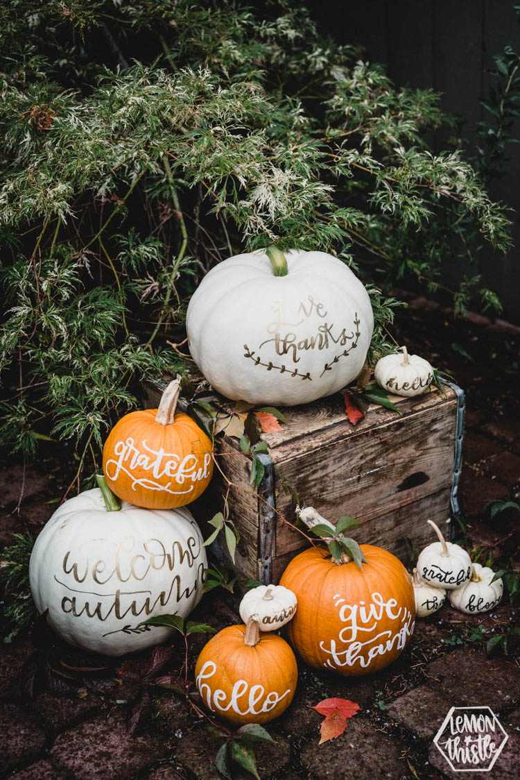 Fall Hand Lettered Pumpkins