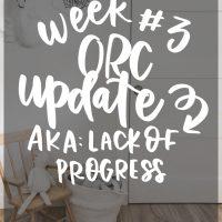 DIY renoation realities- week 3 ORC update