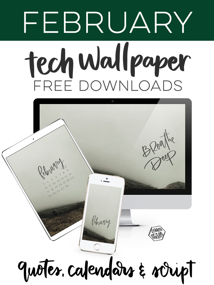 Breathe Deep February Tech Wallpapers free downloads with calendar monthly script and quote!
