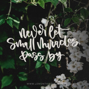 Never let small miracles pass by- love this hand lettered printable quote!