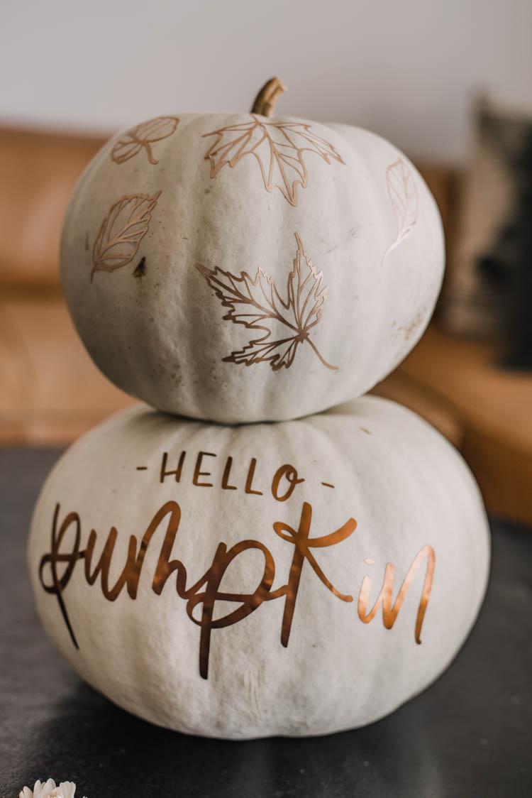 Matte metallic pumpkins! Love the hand lettered 'hello pumpkin' design on this one! Plus free cut file