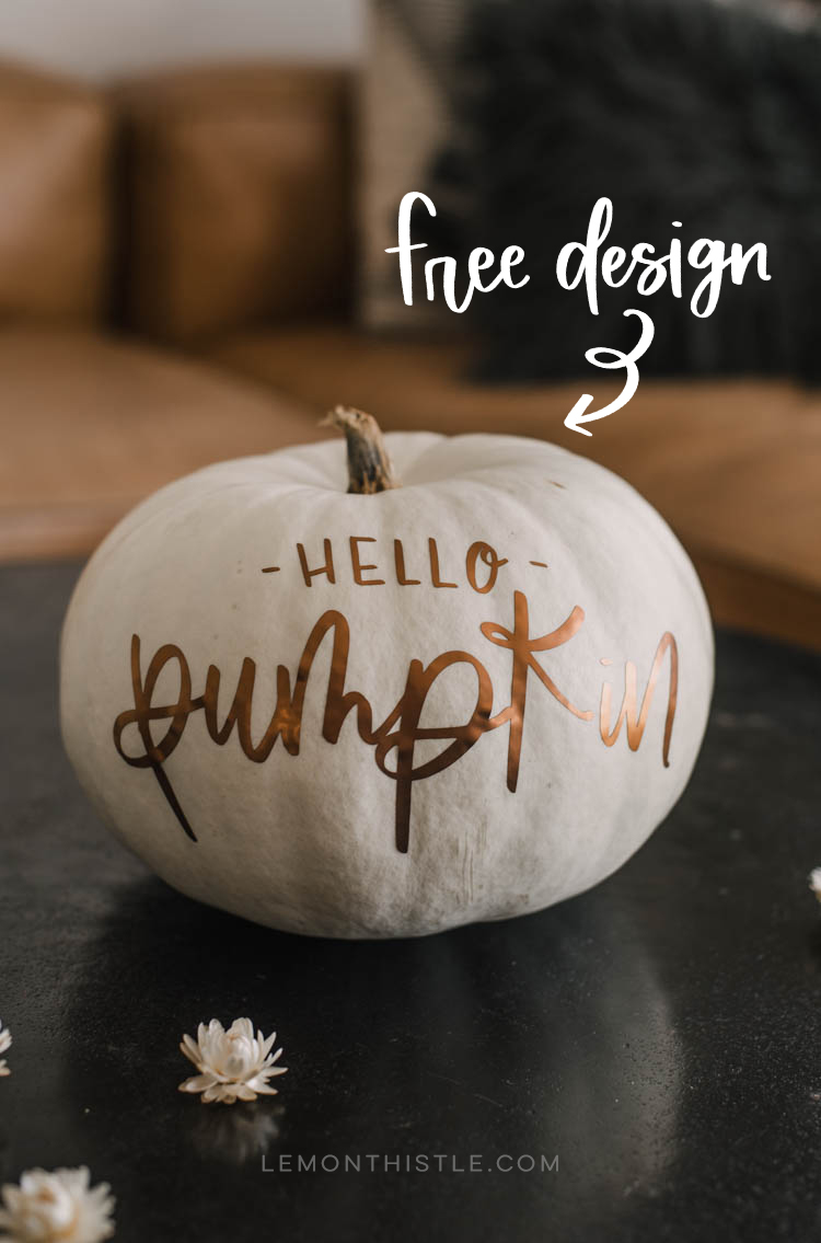 Matte metallic pumpkins! Love the hand lettered 'hello pumpkin' design on this one! Plus free cut file