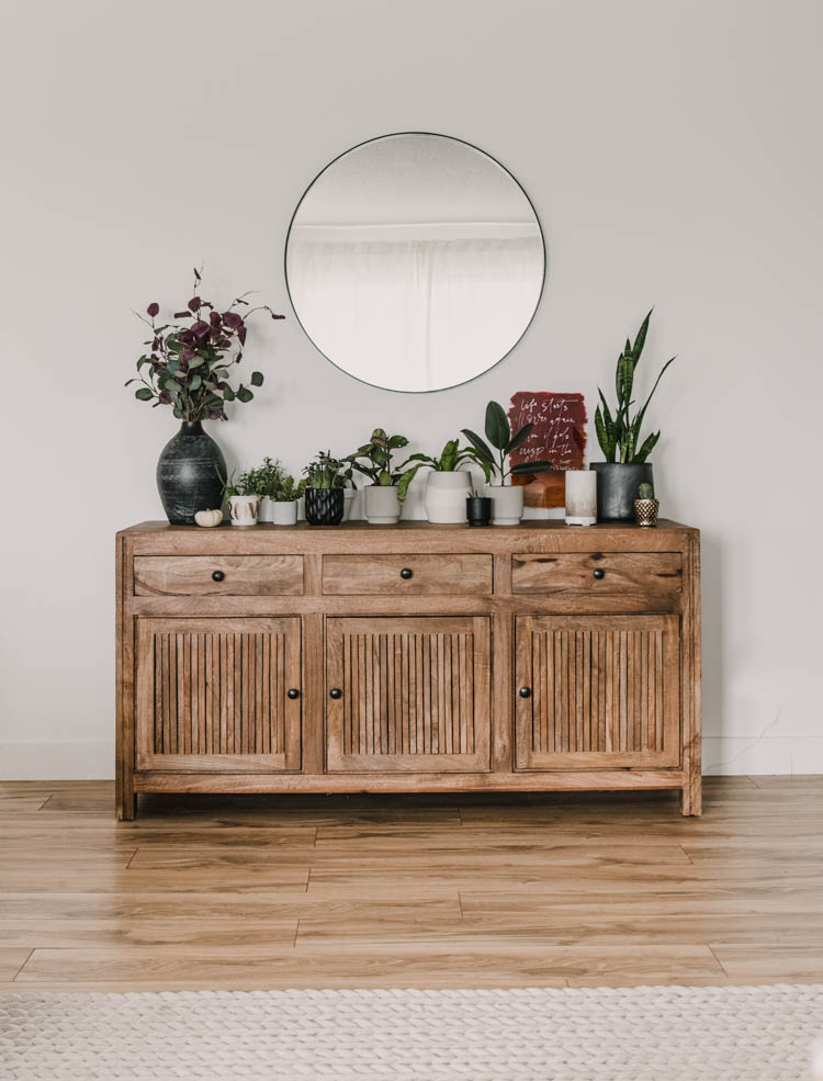 Console cabinet filled with plants and subtle autumn decor