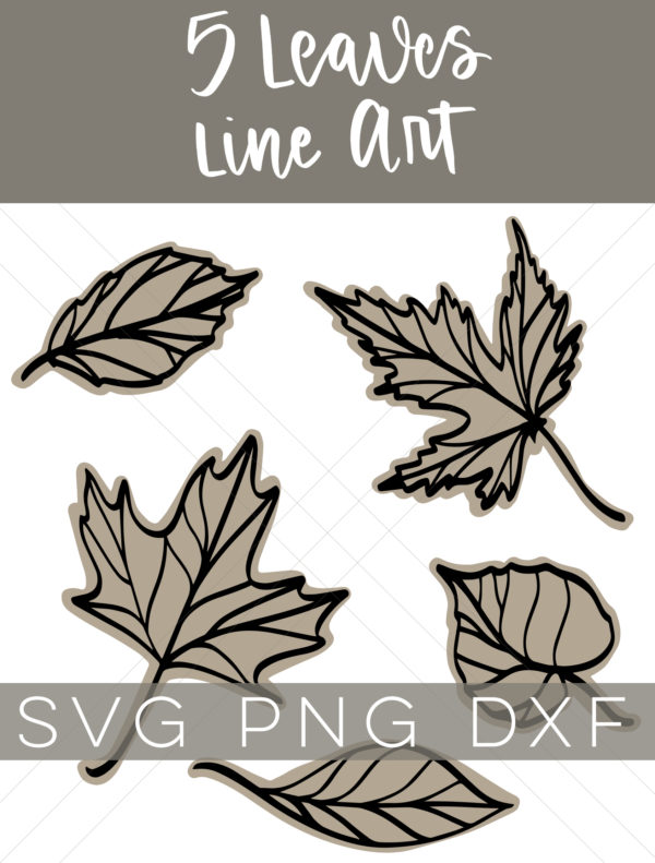Collage of 5 line art leaves with text overlay - 5 Leaves Line Art SVG PNG DXF