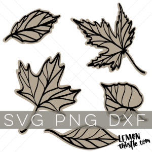 Shop listing image for a bundle of 5 line art leaves