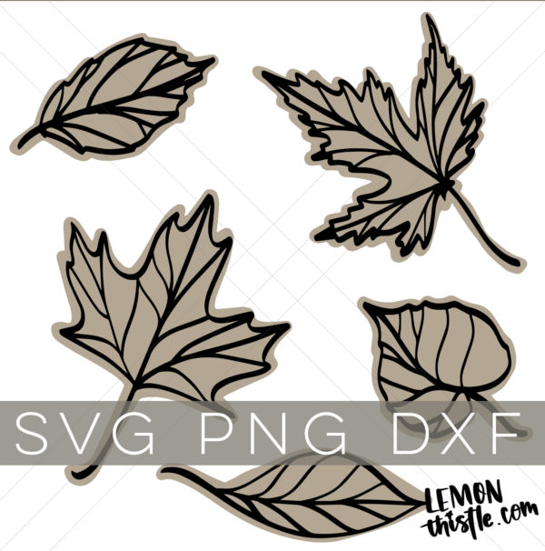 Shop listing image for a bundle of 5 line art leaves