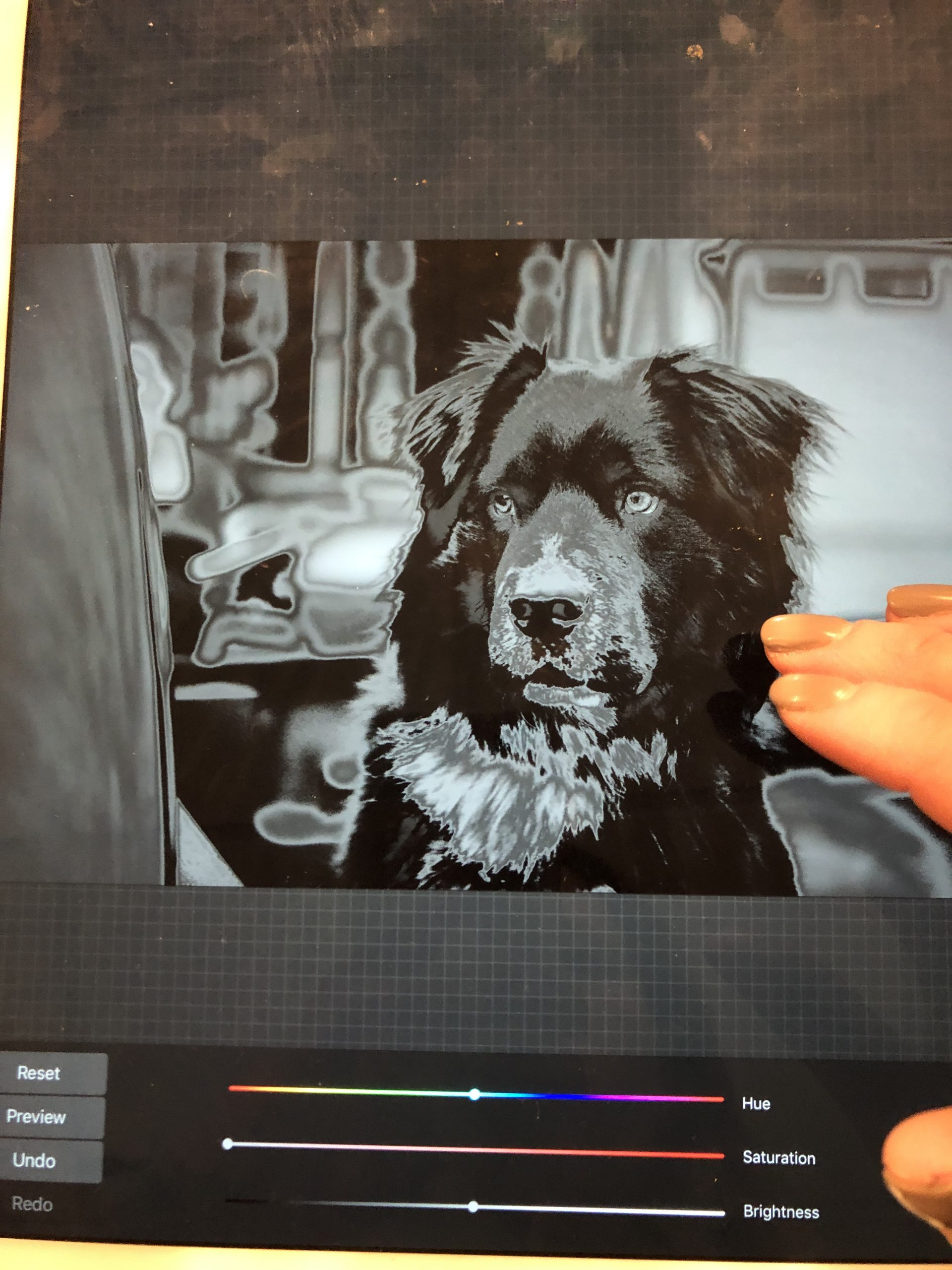 how to make a pet photo into a cut file
