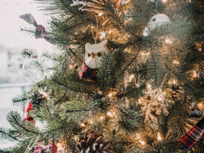 Woodlands animals and red plaid christmas tree decorations