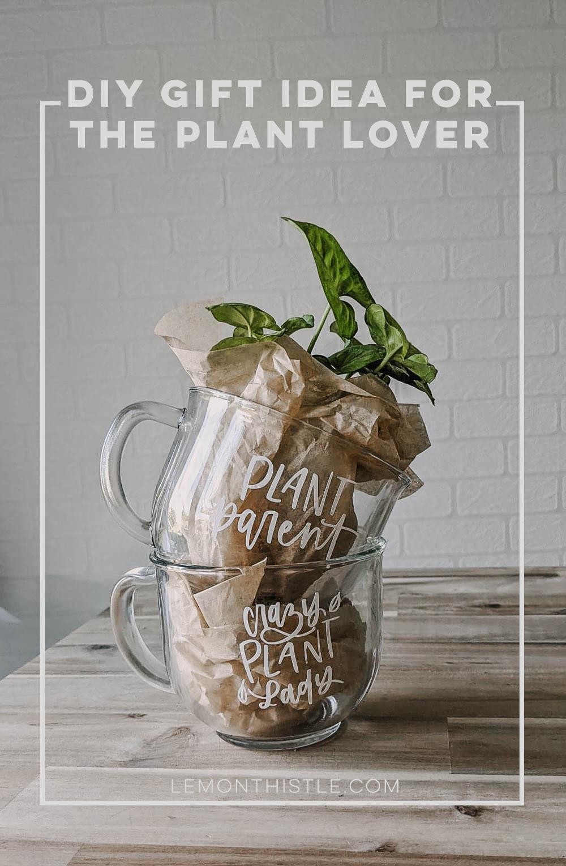 DIY Plant Mugs