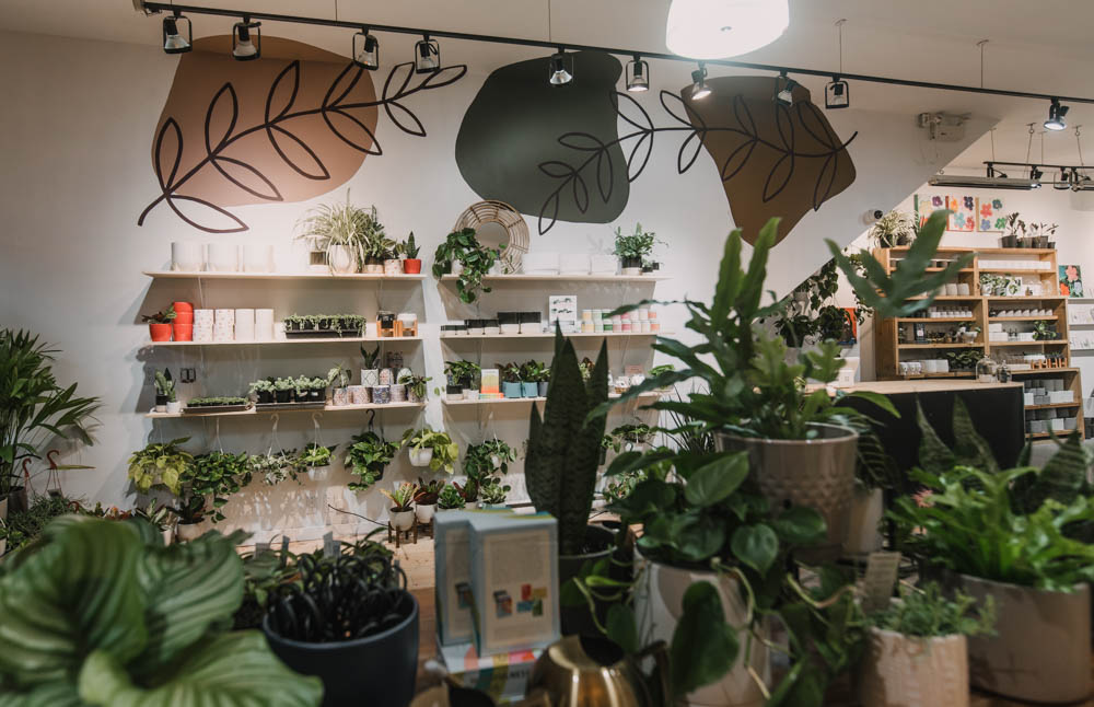 Store Makeover