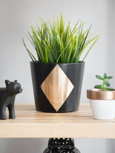 DIY Plant Pot Upgrade
