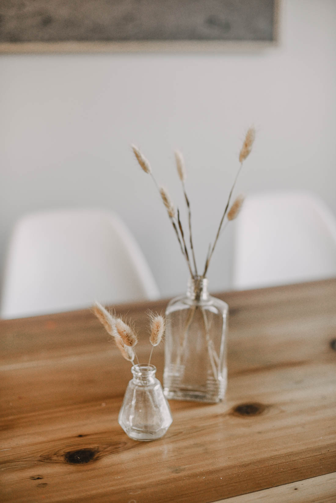 Bunny Tail Grasses for Neutral Spring Decor