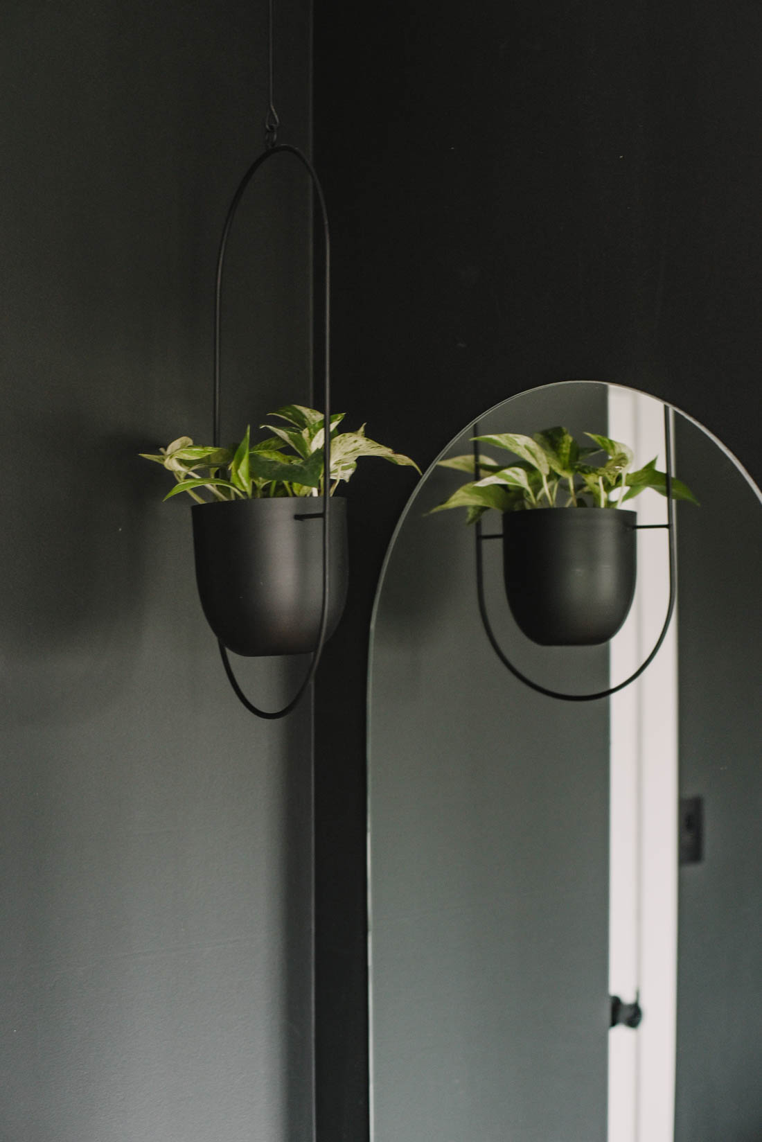 Modern Pill shaped mirror with hanging plant