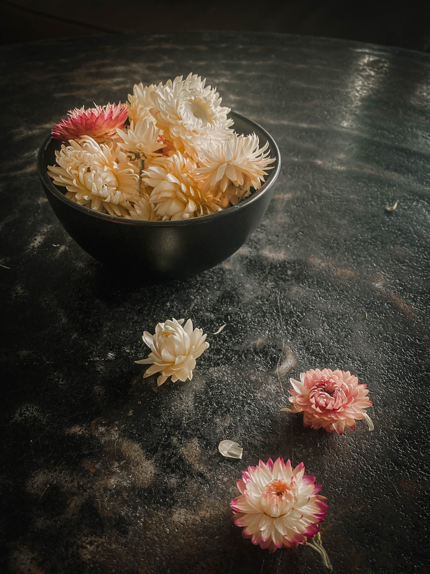 dried strawflowers in a bowl