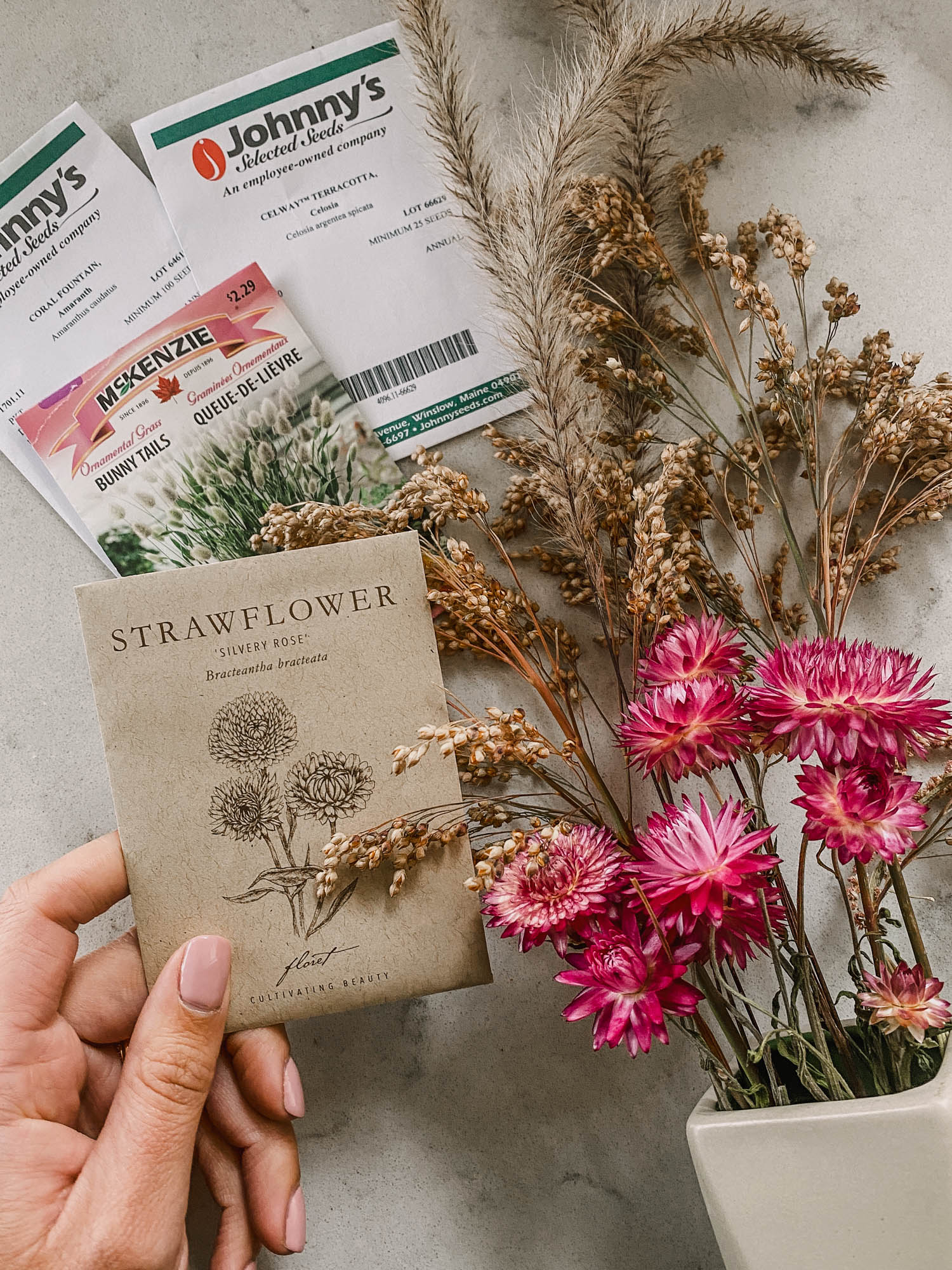 cut flower seeds that make great dried flowers